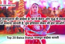 Top 20 Baisa Status Shayari